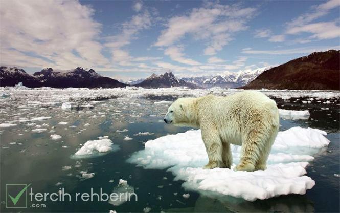 küresel ısınma nedir